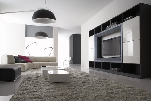 photo decoration meuble de rangement salon. Black Bedroom Furniture Sets. Home Design Ideas