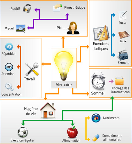 Le mind-mapping
