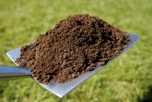 Gazon: analyse du sol