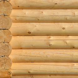 Mur en rondin de bois