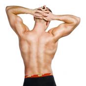 Se muscler les épaules