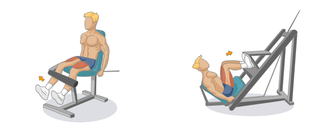exercice gym affiner jambes