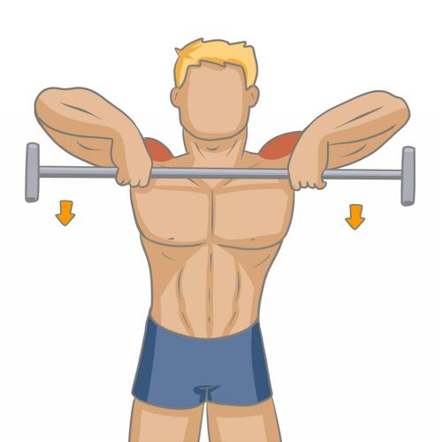 Bien muscler ses paules musculation - Musculation dessin ...
