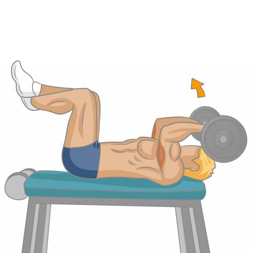 Bien muscler ses triceps musculation - Programme prise de force developpe couche ...