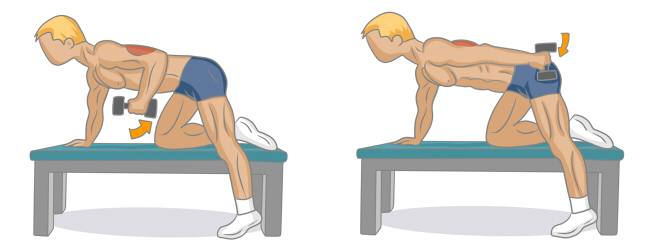 Bien muscler ses triceps musculation - Exercice musculation banc ...