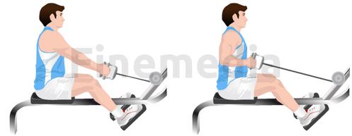 Musculation et tirage horizontal avec poulie