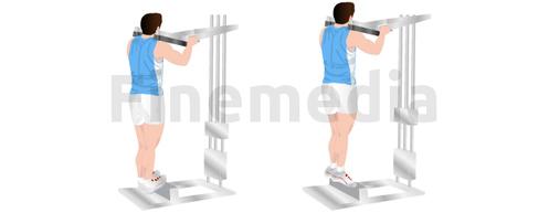 Exercices pour muscler ses mollets en extension