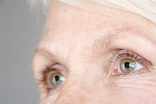 ae5859c1e6 Elle se poursuit par la cornée, située sur la partie antérieure du globe  oculaire, c'est une lentille transparente qui capte et ...