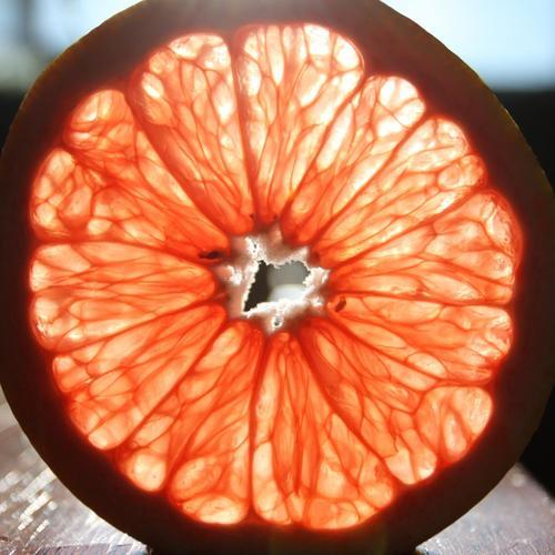 Le pamplemousseet la naringénine