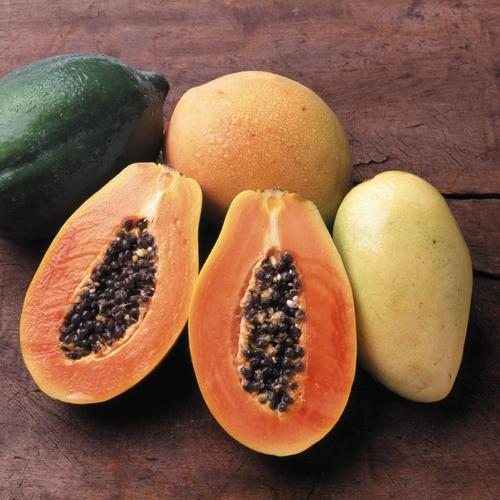Liste de fruits orange ooreka - Image fruit exotique ...