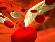 Schema globules arteres