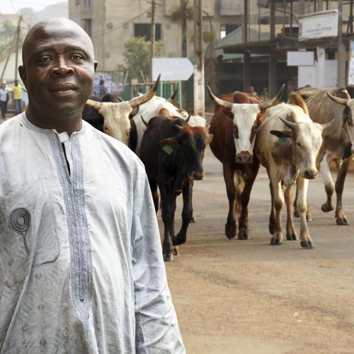 Formalités pour un voyage au Nigeria