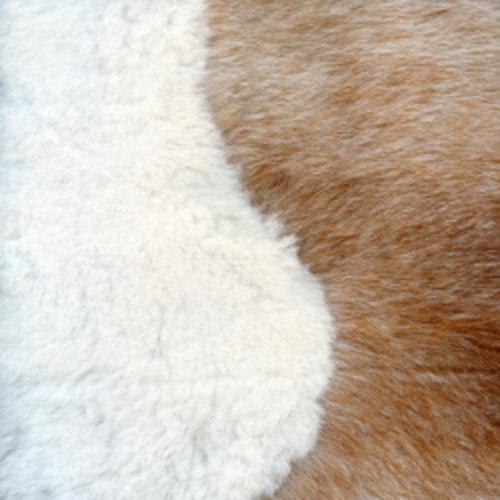 Nettoyer une tache sur des poils ou de la peau de chèvre ou de mouton