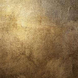 Peinture le sujet d crypt la loupe page 5 - Salon couleur bronze ...