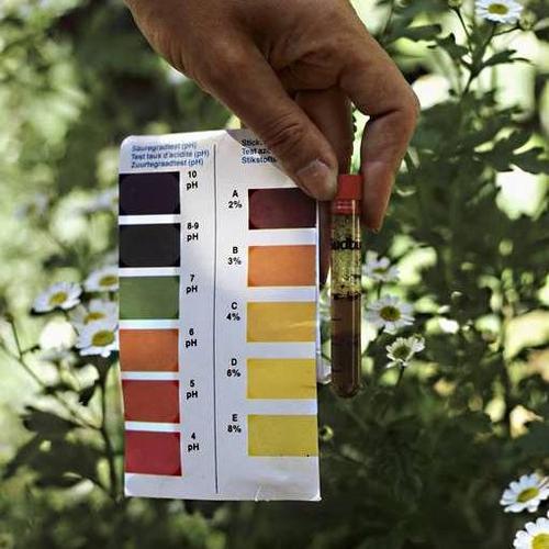 11 choses que votre paysagiste ne vous confiera pas am nagement de jardin - La cuisine c est aussi de la chimie ...