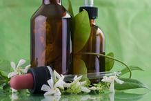 Plantes huiles essentielles
