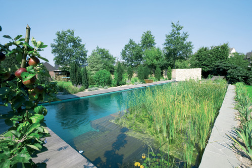 301 moved permanently for Piscine naturel