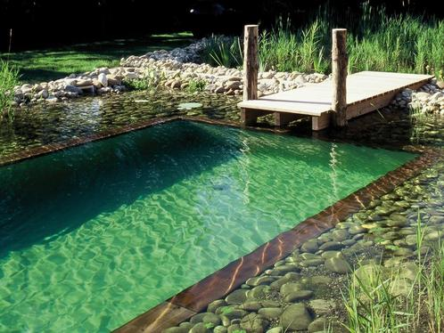 Piscine naturelle ooreka for How to build your own house in florida