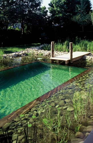 Photo piscine piscines naturelles for Photo piscine naturelle