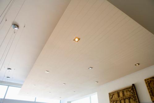 Les plafonds se distinguent par le type de structure mais aussi par leur pente.