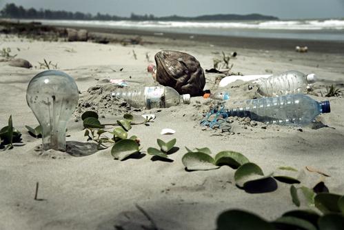 Des déchets sur la plage