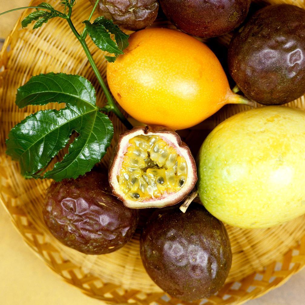 Fruit de la Passion (Passiflora edulis)