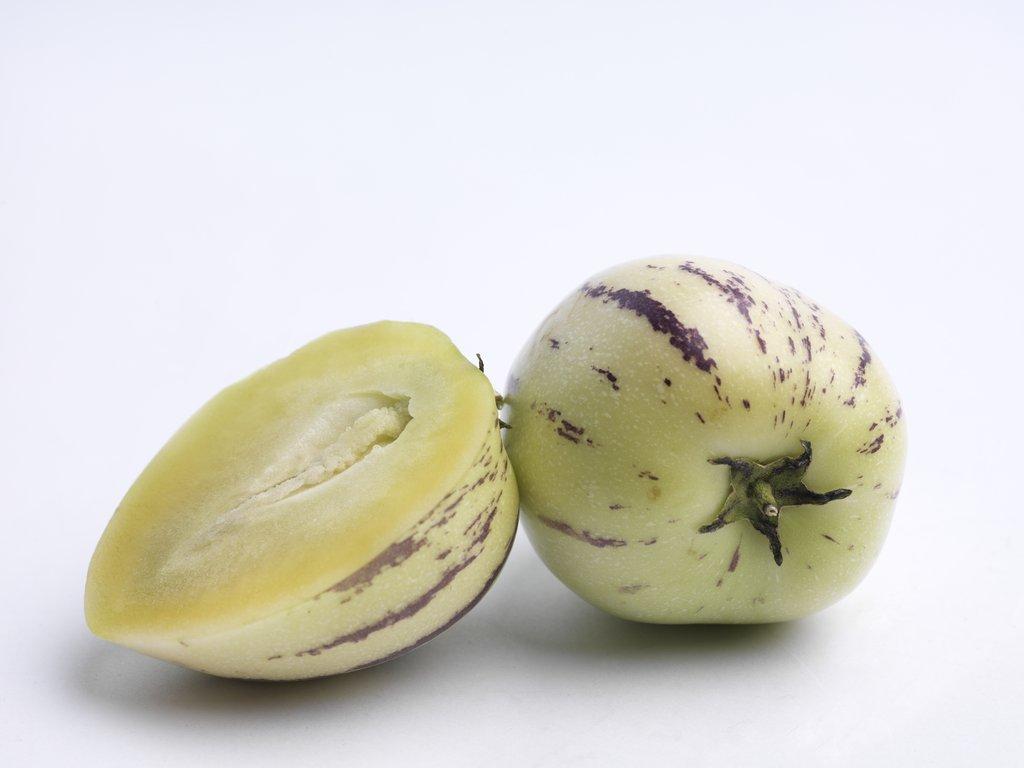 Pepino cultiver et r colter ooreka - Quand cueillir un melon ...