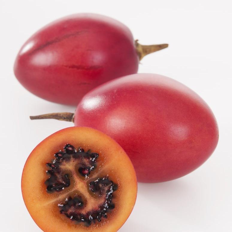 Tamarillo à fruits rouge