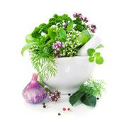 Un bol contenant des plantes