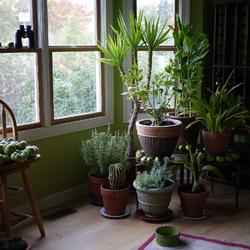 Aménagement de jardin : vos astuces sur Ooreka.fr - page 2