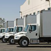 Camions de frêt blancs