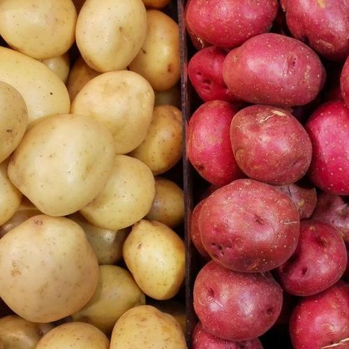 Faire cuire les pommes de terre