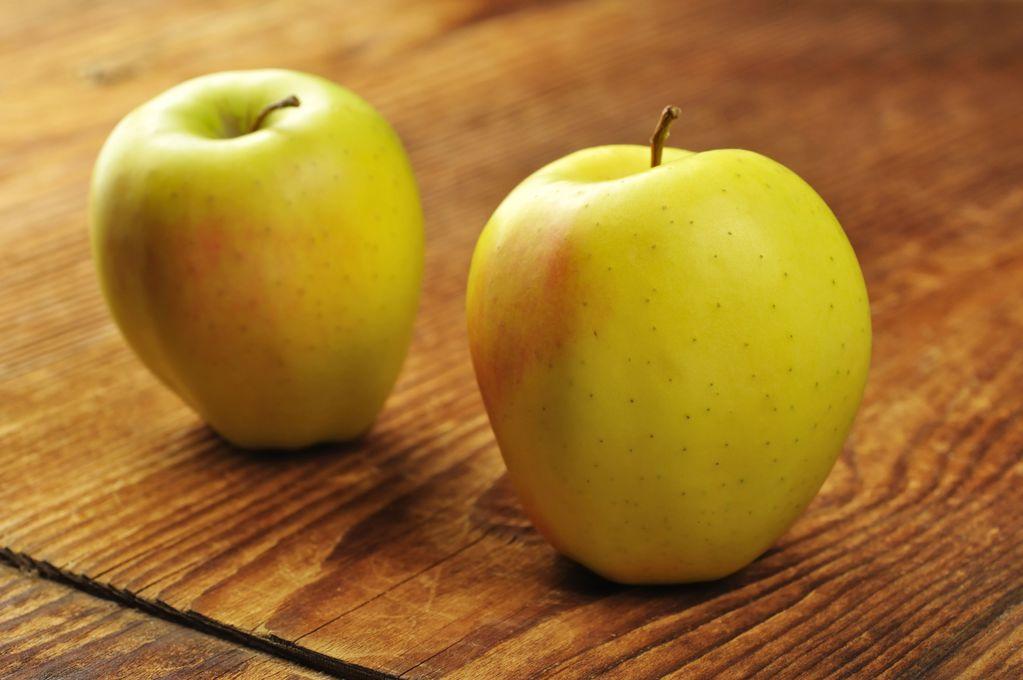 Pomme golden caract ristiques de la golden ooreka - Ou trouver des caisses u00e0 pommes ...