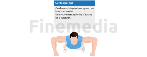 Exercices musculation et pompes