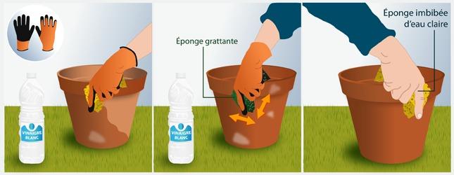 Supprimez les taches blanchâtres  sur des pots de terre cuite