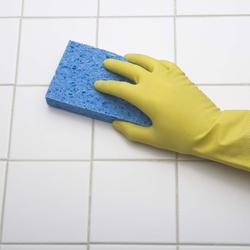 Enlever les moisissures des joints de carrelage - Enlever humidite salle de bain ...