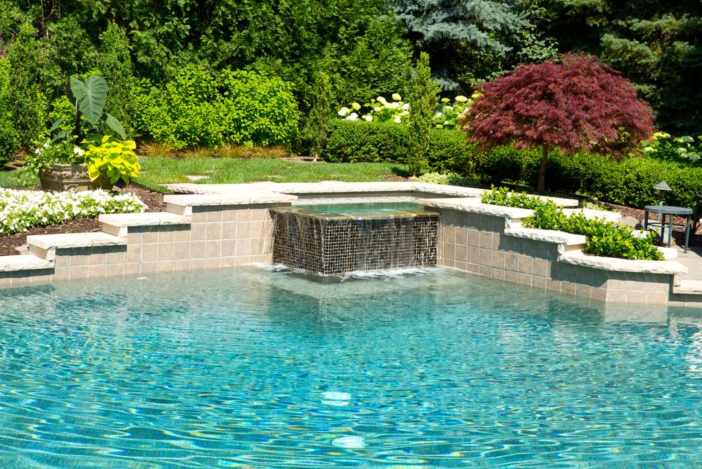 plantation autour d un bassin plantes filtrant lueau pour. Black Bedroom Furniture Sets. Home Design Ideas