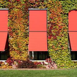 Pare-soleil pour fenêtre de maison : une alternative au volet