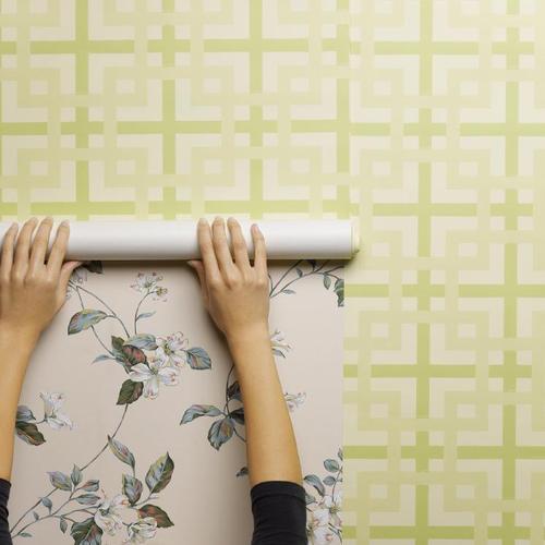 r nover un mur avec du papier peint intiss papier peint. Black Bedroom Furniture Sets. Home Design Ideas