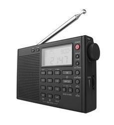 Radio numerique terrestre
