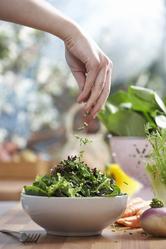 Plat salade assaisonnement