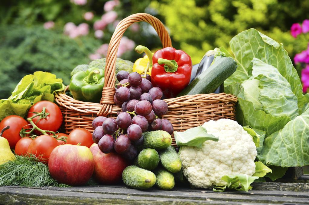 Célèbre Différence entre un fruit et un légume : toutes les clés - Ooreka NB86