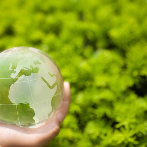 Je veux respecter l'environnement, mais comment faire?