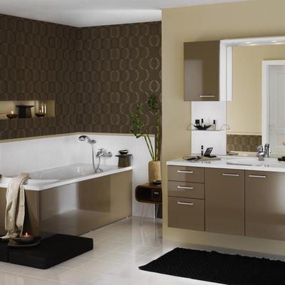 Salle de bain le sujet d crypt la loupe - Meuble salle de bain pas chere ...