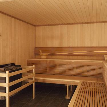 sauna comparatif des diff rents types de sauna. Black Bedroom Furniture Sets. Home Design Ideas