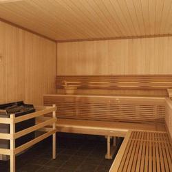sauna infrarouge infos et prix du sauna lectrique. Black Bedroom Furniture Sets. Home Design Ideas