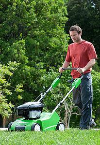 Scarificateur pour entretien de la pelouse