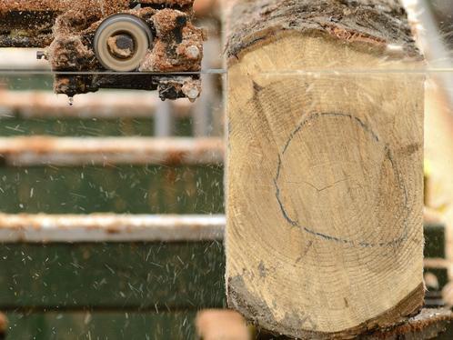 Une scie mobile: la scie mobile est une scie à ruban géante ou une scie circulaire. Elle sert pour la coupe du bois brut.