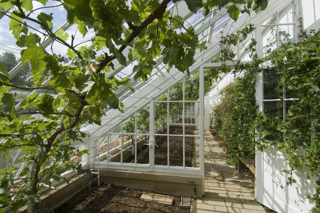 Fonctionnement d une serre de jardin nouveaux mod les de for Prix d une serre