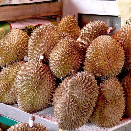 10 fruits exotiques ooreka - Liste fruits exotiques avec photos ...